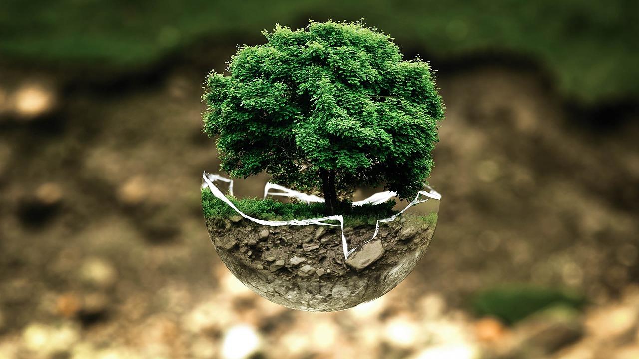 Técnico/a medioambiental