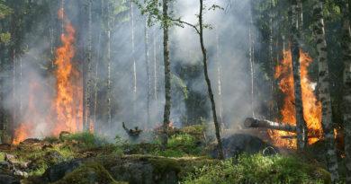 incendios forestales de Cantabria
