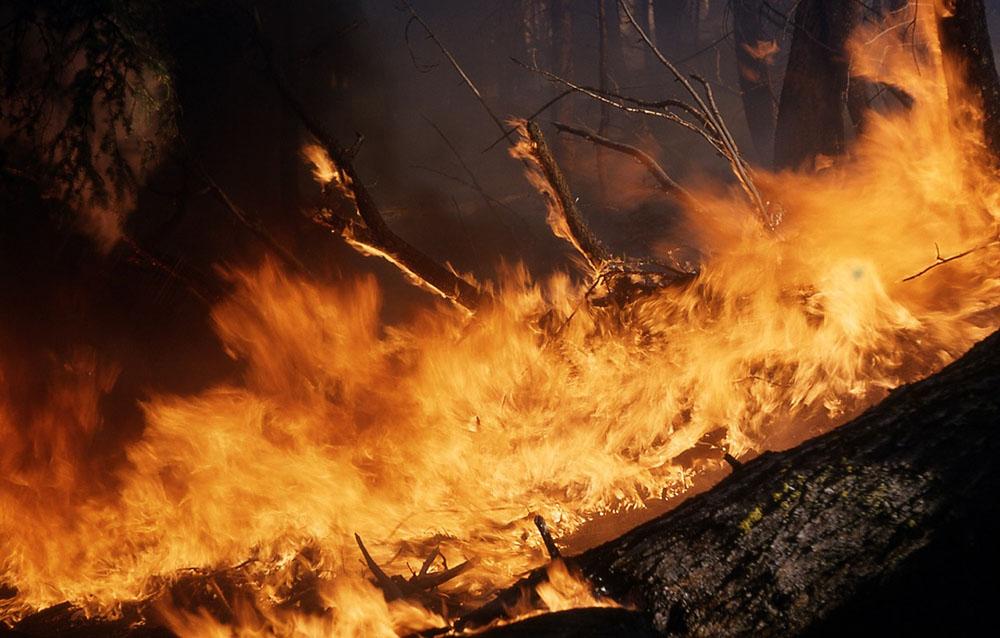 Imágenes de incendios forestales