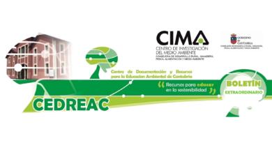 maratón digital por la emergencia climática